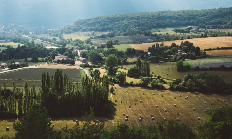 paysage aménagé